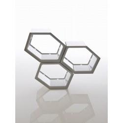 Honeycomb D70