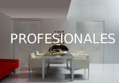 Formulario para profesionales